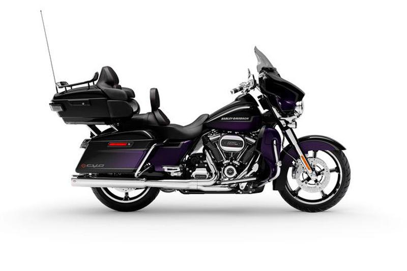 Royal Purple and Royal Black Fade