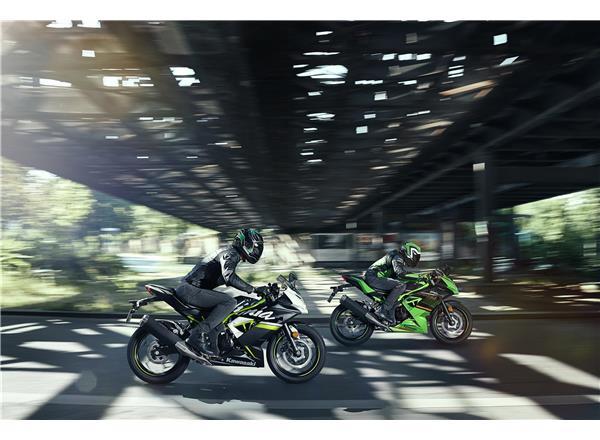 2020 Ninja 125  - Image 10